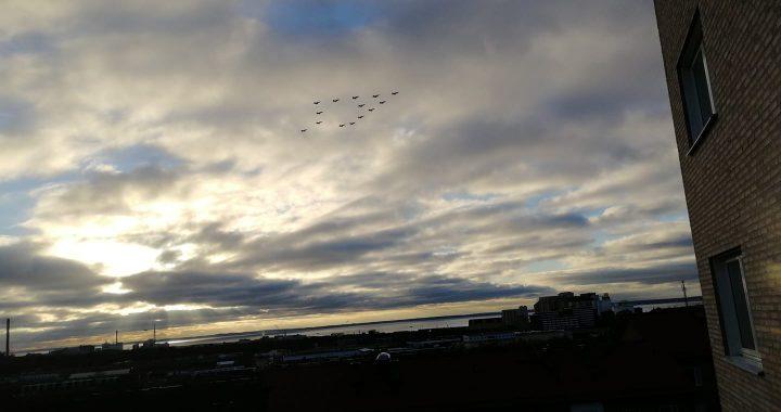 Mäktig uppvisning av Gripenplan över Skåne