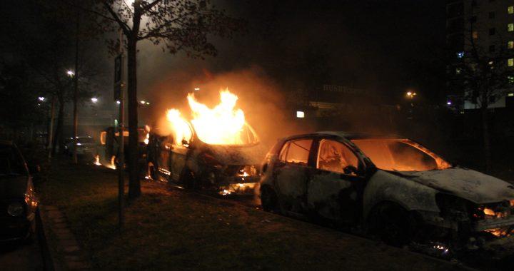 Säkerhetsexpert: Sverige på väg mot inbördeskrig