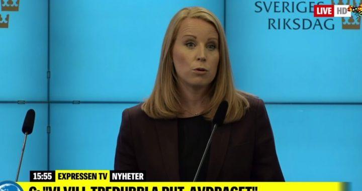 Analys: Annie Lööfs stora lögn – Vänsterpartiet kan krossa uppgörelsen