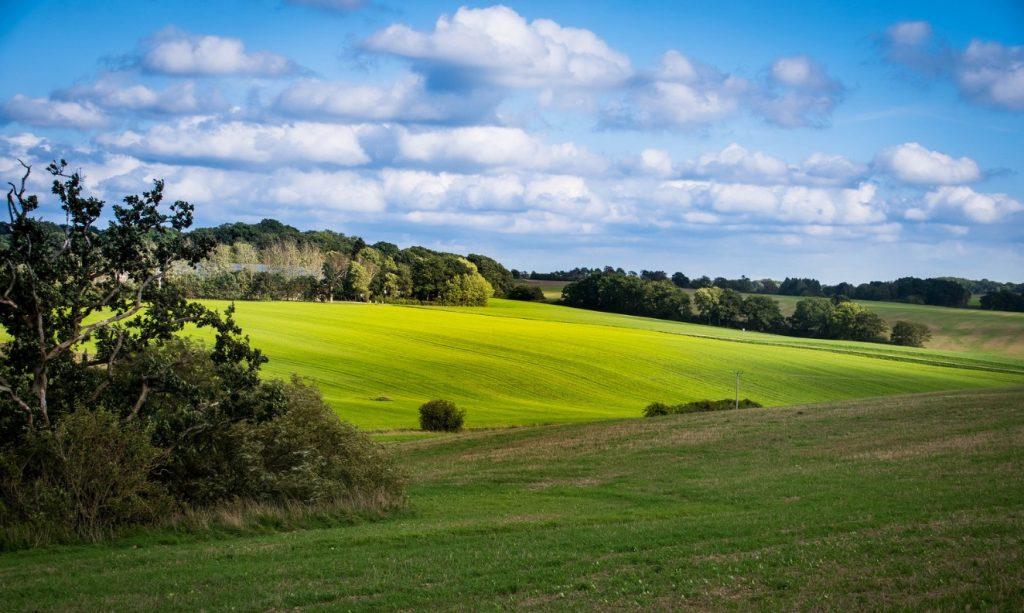 361 år sedan Sverige stal Skåneland från Danmark – genom folkmord