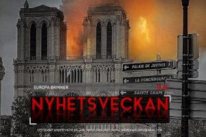 Nyhetsveckan #36 – Europa brinner, Greta Messias, kyrkoattacker, nya kvinnohatet