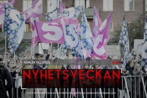 Nyhetsveckan #41 – Kärlek till döds, Tafs-Nallegate fortsätter, valdags, dumstrut-Morgan