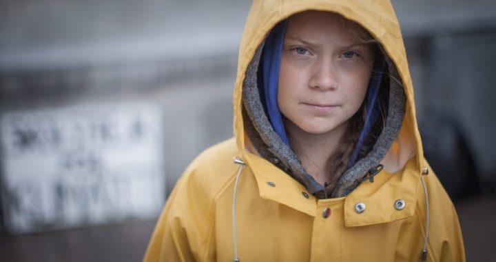 """Greta Thunberg-bok sågas i Danmark: """"Falskt och förljuget"""""""