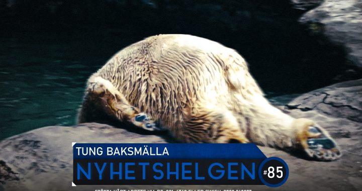 Nyhetshelgen #85 – Tung baksmälla, sossetapp, mörker i Europa